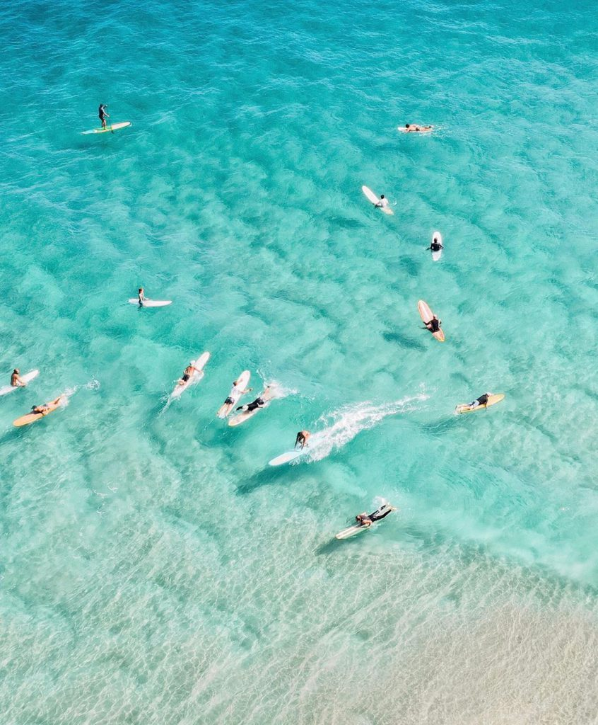 group of surfers lying on surfboards in ocean