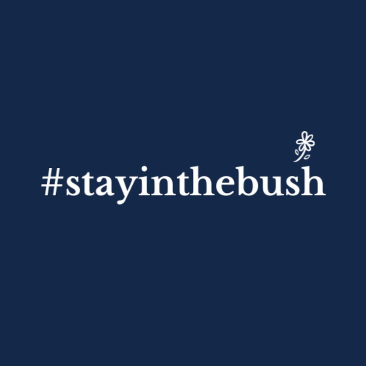 stayinthebush