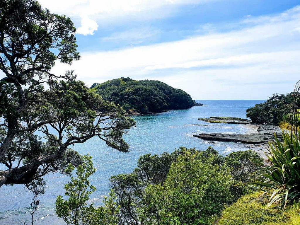daylight picture of  goat island New Zealand